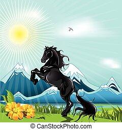 pferd, schwarz