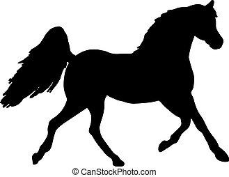 pferd, silhouette, grobdarstellung, -, auf, aufbäumen, ...