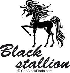 pferd, silhouette, scharren, schwarz, vorderbein, muscled
