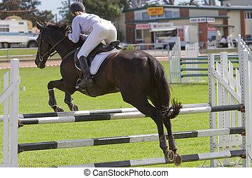 pferd springen