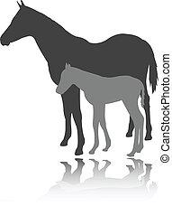 pferd, vektor, -, fohlen