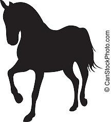 pferd, vektor, silhouette