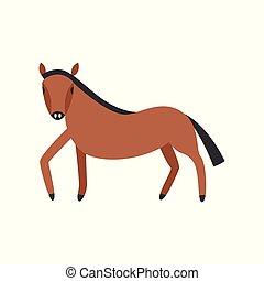 pferd, voll, freigestellt, bucht, hintergrund., länge, ...