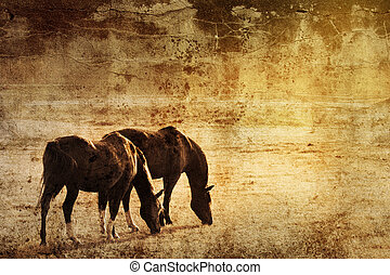 pferden, auf, grunge, hintergrund