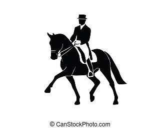pferden, dressage