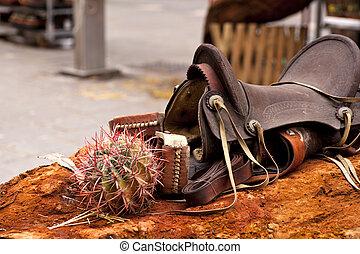 pferdesattel, und, kaktus