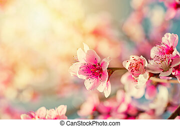 wasser magnolie blumen magnolie reflektiert auf stockfotos suche fotografien clipart. Black Bedroom Furniture Sets. Home Design Ideas