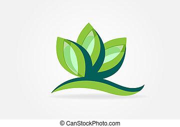 pflanze, ökologie, bild, vektor, blättert, logo