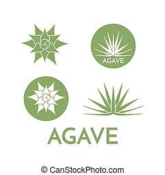 pflanze, blume, bunte, abbildung, vektor, grün, agave, logo