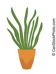 pflanze, haus, topf, freigestellt, vektor, grün, white.