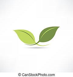 pflanze, ikone