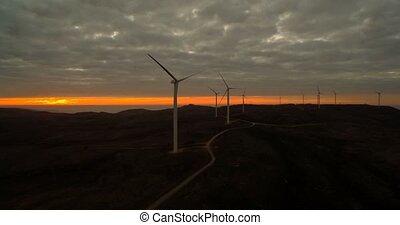 Pflanze,  portugal, Macht, fliegendes, Luftaufnahmen, Sonnenuntergang