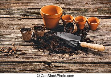 pflanzen, a, topfpflanze, auf, natürlich, hölzern, hintergrund, in, kleingarten