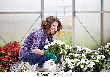 pflanzen kinderzimmer, berufstätige frau