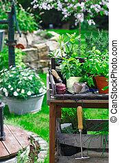 pflanzen, tisch