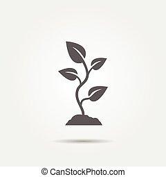 pflanzenkeim, ikone