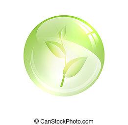pflanzenkeim, kugel, glänzend