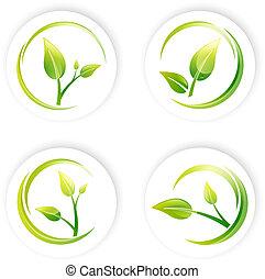 pflanzenkeim, satz, blatt, design, grün