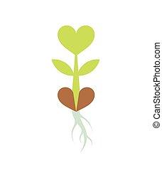pflanzenkeim, wenig, grünpflanze