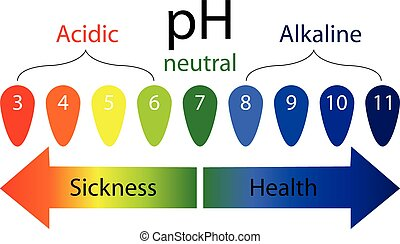 pH level scale showing sickness and health in human body...
