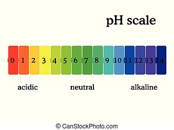 pH scale diagram with corresponding acidic or alcaline ...