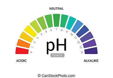 pH scale indicator chart diagram acidic alkaline measure. pH...