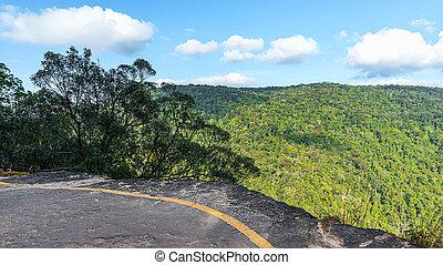 pha, diao, dai, hermoso, paisaje, tropical, rainforest