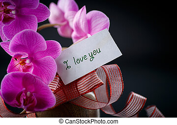 Phalaenopsis line with a declaration of love on a black ...