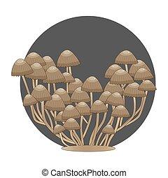phalloides, veneno, bosque, vector, illustration., hongos, ...