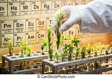 Pharmaceutical lab exploring new methods of plant healing