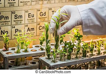 Pharmaceutical laboratory testing of pesticides on plants