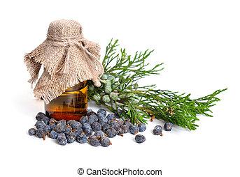 pharmaceutique, huile, sabina, mûre, (berries)., isolé, vert, juniperus, bottle., blanc, essentiel, cônes