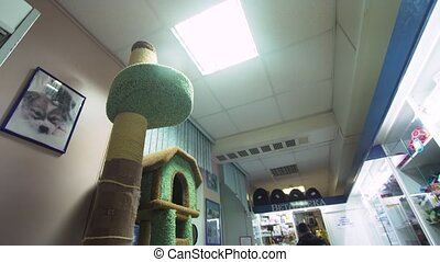 Pharmacy store in a veterinary clinic. - Pharmacy store with...