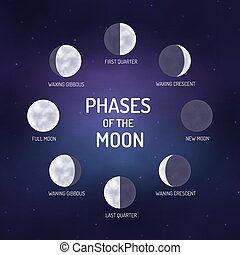 Phases of the moon. Educational poster for school. Vector...