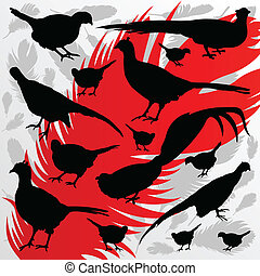 Pheasant bird detailed hunting season silhouettes illustration collection background vector