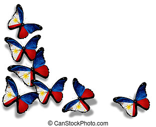 Philippine flag butterflies, isolated on white background