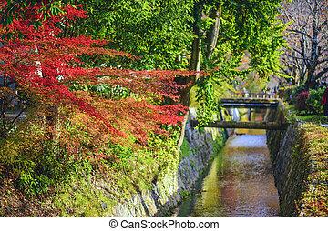 Philospher's Path in Kyoto, Japan