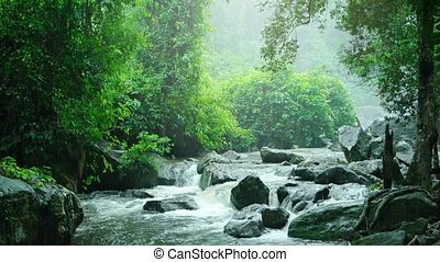 "Phnom Kulen National Park - ""Jungle greenery, partly..."
