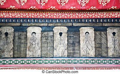 pho, pinturas, fareast, acupuntura, medicina, ensinar, wat, templo
