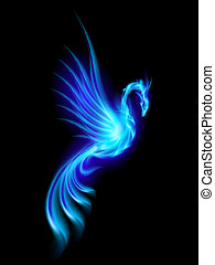 Phoenix - Burning blue phoenix isolated over black...