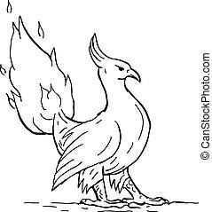 Phoenix-burning-tail-DWG
