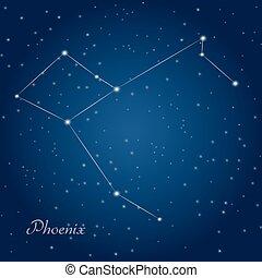 phoenix, constelación