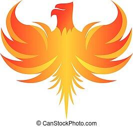 phoenix flame logo illustration