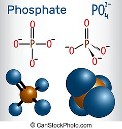 Phosphate anion molecule . Structural chemical formula and molecule model. Vector illustration