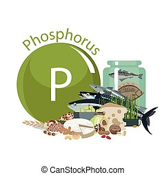 Phosphorus. Food sources. Food products with the maximum ...