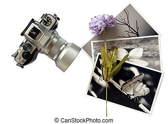 Photo album with photos of travel a