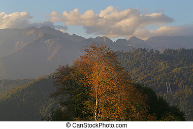 Photo background landscape with mountains