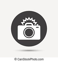 Photo camera sign icon. Photo flash symbol. Gray circle ...