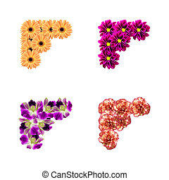 photo, fleurs, coins