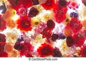 photo, fleurs, coloré, tas